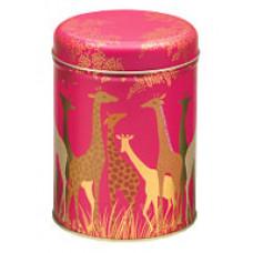 Sara Miller - Giraffer