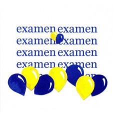 Kort Examen