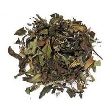 Pai Mu Tan - Vitt te
